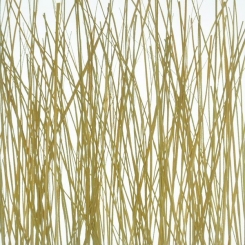 decodeco-nature-wood-grass